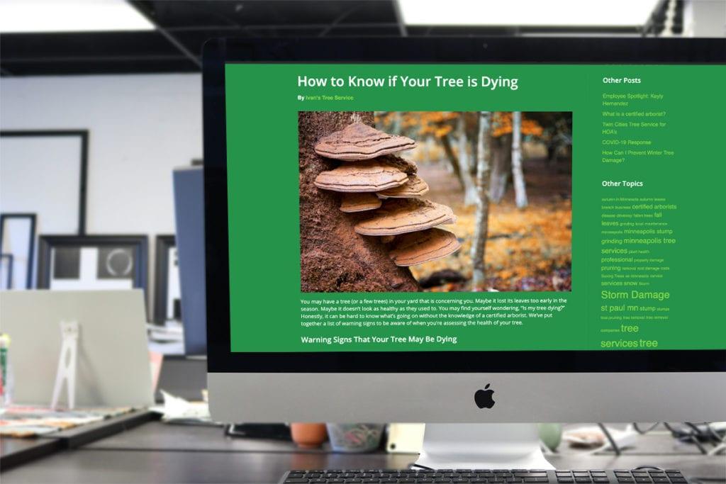 TT.Website.CaseStudy.BlogWriting.ITS2 copy